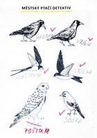 Poznáváme ptáčky
